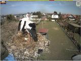 http://www.allegaleria.pl/images/7b2fuxqatbbx7gcw0fi_thumb.jpg
