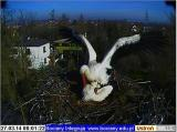 http://www.allegaleria.pl/images/smbneavcenmapkpv6j5s_thumb.jpg